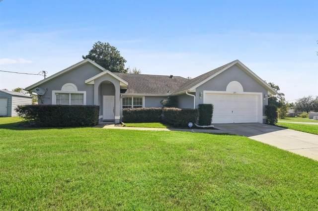 691 Walnut Avenue, Orange City, FL 32763 (MLS #V4921260) :: Cartwright Realty