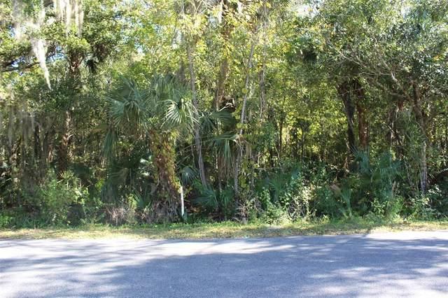 Flamingo Road, Oak Hill, FL 32759 (MLS #V4921281) :: Delgado Home Team at Keller Williams