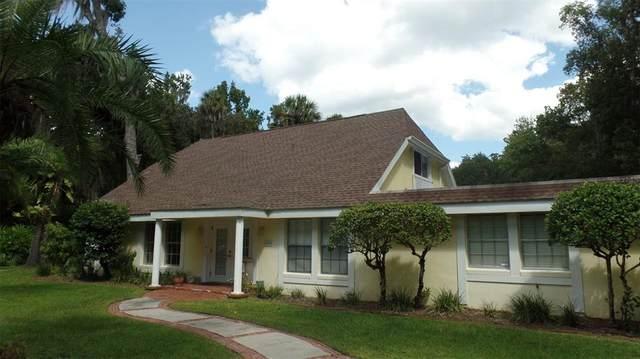 1656 Horseshoe Road, Enterprise, FL 32725 (MLS #V4921357) :: Everlane Realty