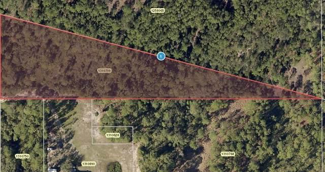 Polar Bear Road, Paisley, FL 32767 (MLS #V4921469) :: Delgado Home Team at Keller Williams
