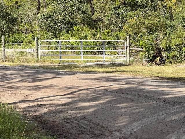 925 Still Road, Pierson, FL 32180 (MLS #V4921552) :: Everlane Realty