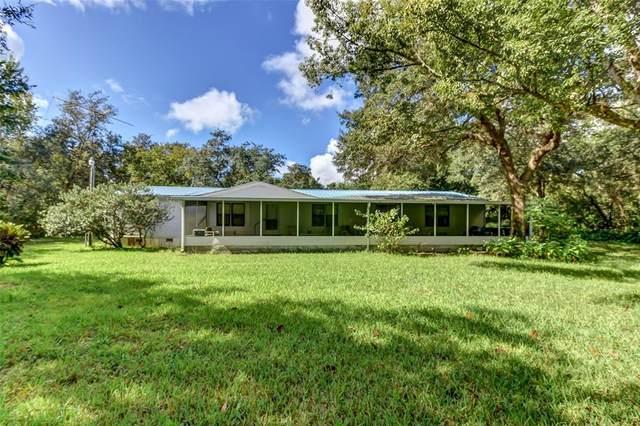 111 Bayberry Road, Georgetown, FL 32139 (MLS #V4921575) :: Everlane Realty
