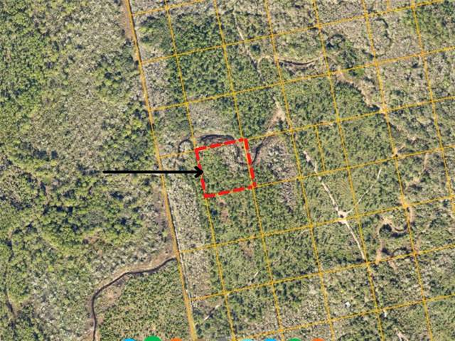 Property Location Is Not Avail, Oak Hill, FL 32759 (MLS #V4921615) :: Florida Real Estate Sellers at Keller Williams Realty