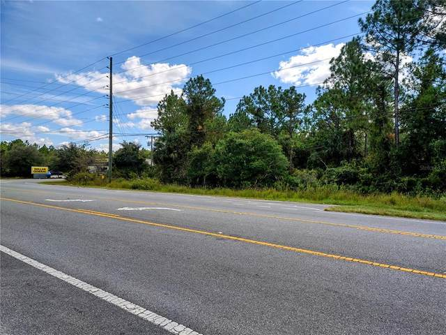 State Road 40, Astor, FL 32102 (MLS #V4921681) :: The Truluck TEAM
