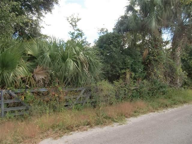 1879 Stone Road, Pierson, FL 32180 (MLS #V4921747) :: Century 21 Professional Group