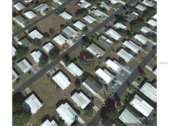 15054 Rialto Avenue, Brooksville, FL 34613 (MLS #W7608077) :: The Duncan Duo Team