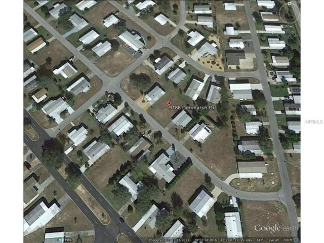 9188 Denmarsh Drive, Brooksville, FL 34613 (MLS #W7608086) :: The Duncan Duo Team