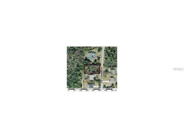 5335 Suwannee Road, Weeki Wachee, FL 34607 (MLS #W7608785) :: Griffin Group