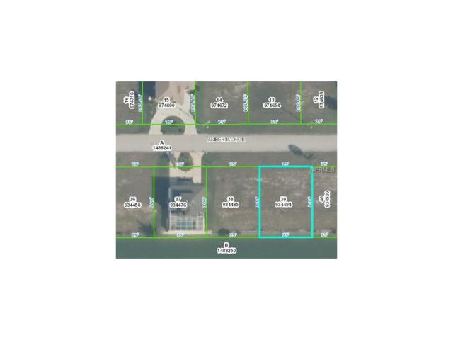 LOT 39 Amberjack Drive, Hernando Beach, FL 34607 (MLS #W7616504) :: The Duncan Duo Team
