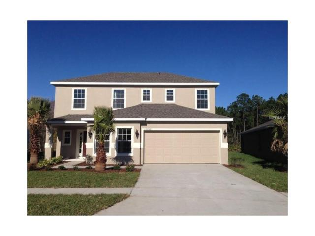 14119 Poke Ridge Drive, Riverview, FL 33579 (MLS #W7627187) :: The Duncan Duo & Associates