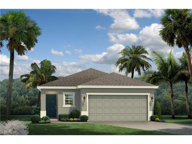 11343 Hudson Hills Lane, Riverview, FL 33579 (MLS #W7627233) :: The Duncan Duo & Associates