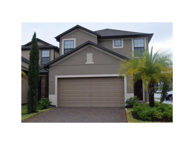 1146 Ballard Green Place, Brandon, FL 33511 (MLS #W7629291) :: The Duncan Duo & Associates