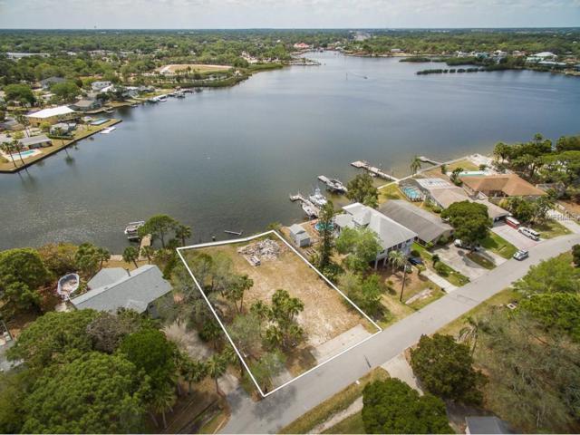 5242 Miller Bayou Drive, Port Richey, FL 34668 (MLS #W7629339) :: Griffin Group