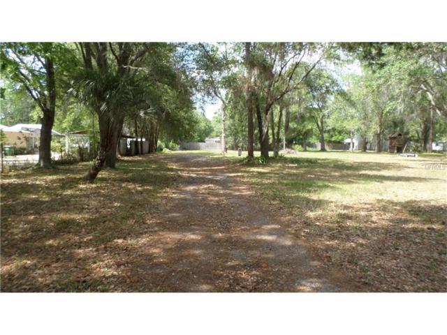 17305 Eagle Lane, Lutz, FL 33558 (MLS #W7629616) :: The Duncan Duo & Associates
