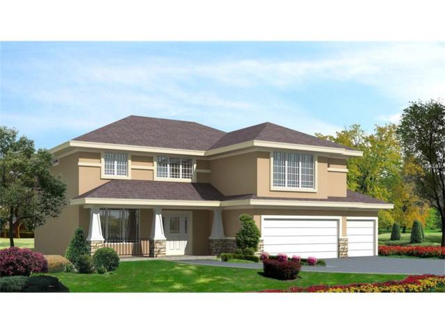 0 Golden Meadow Drive, Wesley Chapel, FL 33544 (MLS #W7630577) :: The Duncan Duo & Associates