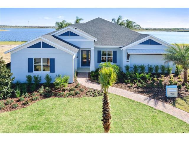 11849 Lake Lucaya Drive, Riverview, FL 33579 (MLS #W7630632) :: The Duncan Duo & Associates