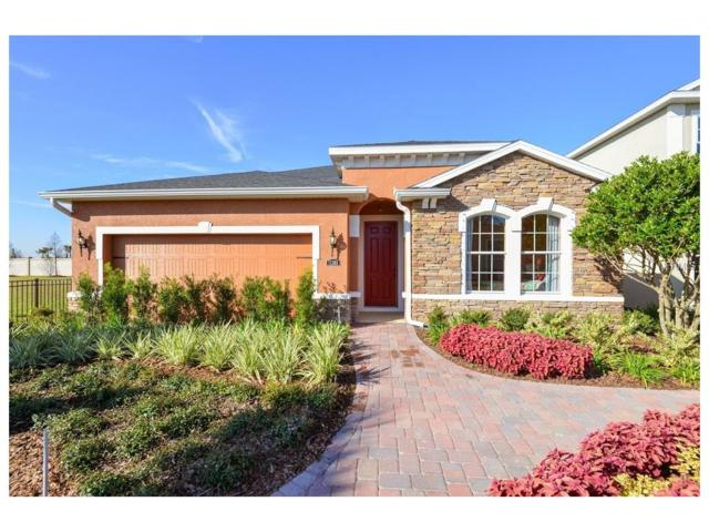 14143 Poke Ridge Drive, Riverview, FL 33579 (MLS #W7630869) :: The Duncan Duo & Associates