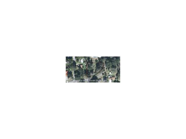 Address Not Published, LK PANASOFFKE, FL 33538 (MLS #W7630939) :: The Duncan Duo Team