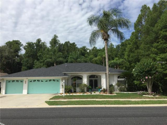 8436 Pinafore Drive, New Port Richey, FL 34653 (MLS #W7630986) :: RE/MAX Innovation