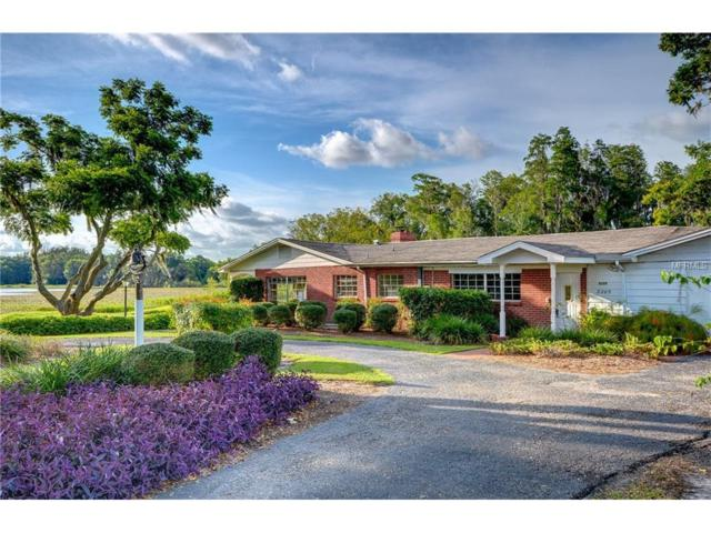 8205 Cosme Road, Odessa, FL 33556 (MLS #W7631196) :: Griffin Group