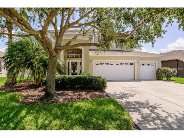 1628 Pink Guara Court, Trinity, FL 34655 (MLS #W7631256) :: Griffin Group