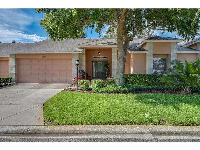 11052 Hollander Avenue, Hudson, FL 34667 (MLS #W7631311) :: Premium Properties Real Estate Services