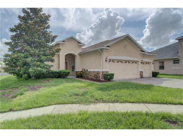 4197 Edenrock Place, Spring Hill, FL 34609 (MLS #W7631314) :: Baird Realty Group