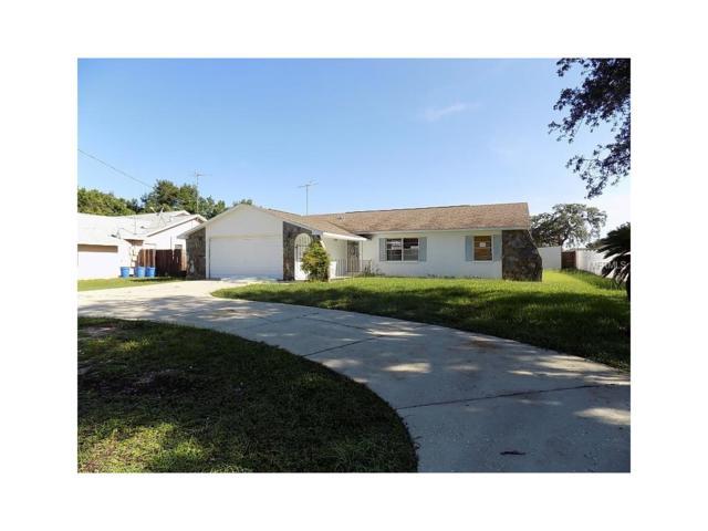 14025 White Plains Street, Spring Hill, FL 34609 (MLS #W7631349) :: Arruda Family Real Estate Team
