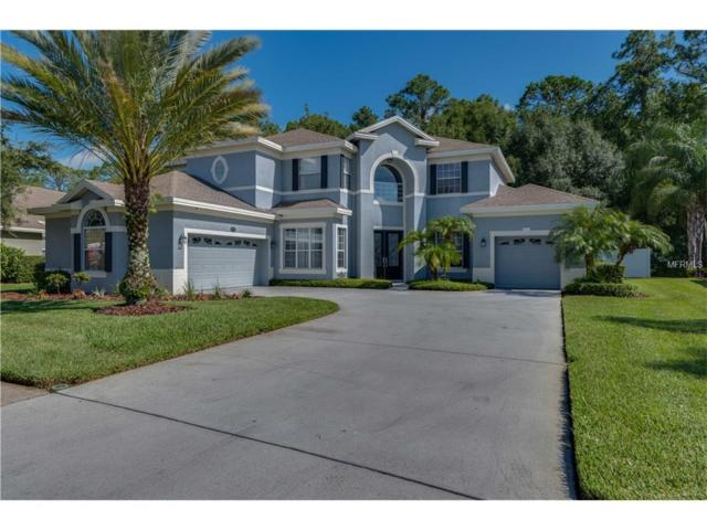 16144 Ivy Lake Drive, Odessa, FL 33556 (MLS #W7631352) :: Arruda Family Real Estate Team