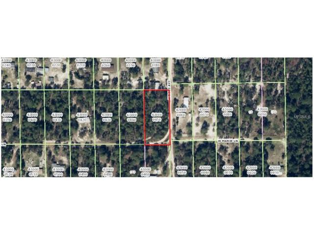 3367 W Mable Lane, Dunnellon, FL 34433 (MLS #W7631474) :: Griffin Group
