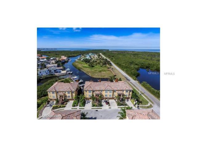 4541 Heron Landing, New Port Richey, FL 34652 (MLS #W7631937) :: The Duncan Duo Team