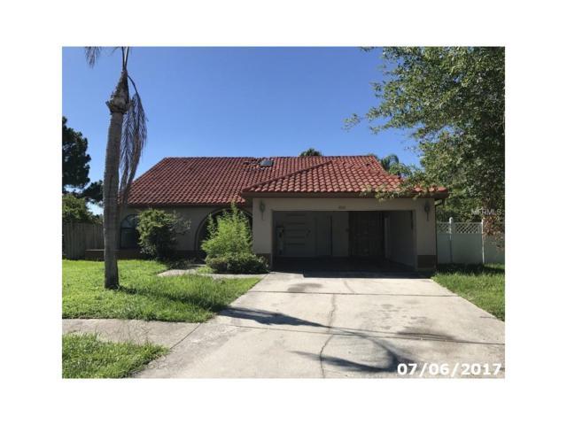 8801 Fieldflower Lane, Tampa, FL 33635 (MLS #W7632054) :: KELLER WILLIAMS CLASSIC VI