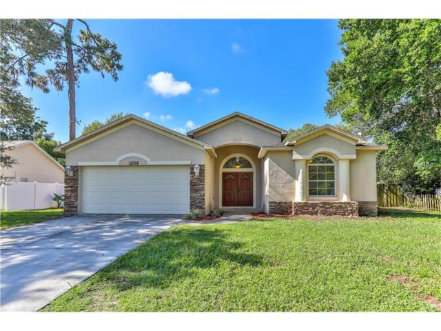11068 Gifford Drive, Spring Hill, FL 34608 (MLS #W7632082) :: The Duncan Duo & Associates