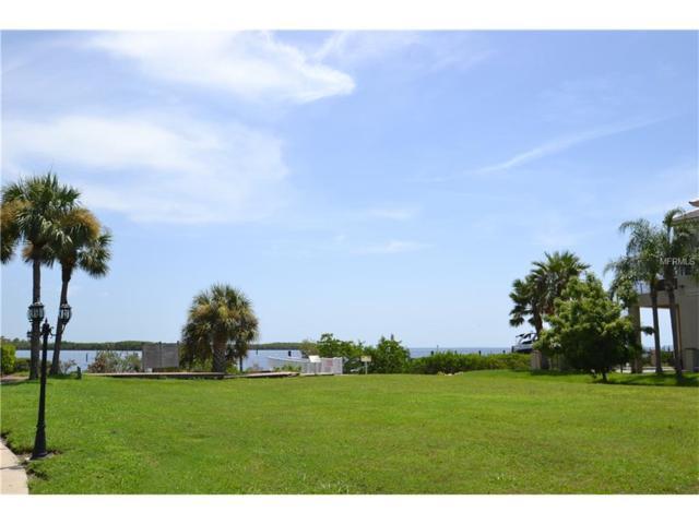 Harborpointe Drive, Port Richey, FL 34668 (MLS #W7632193) :: Cartwright Realty