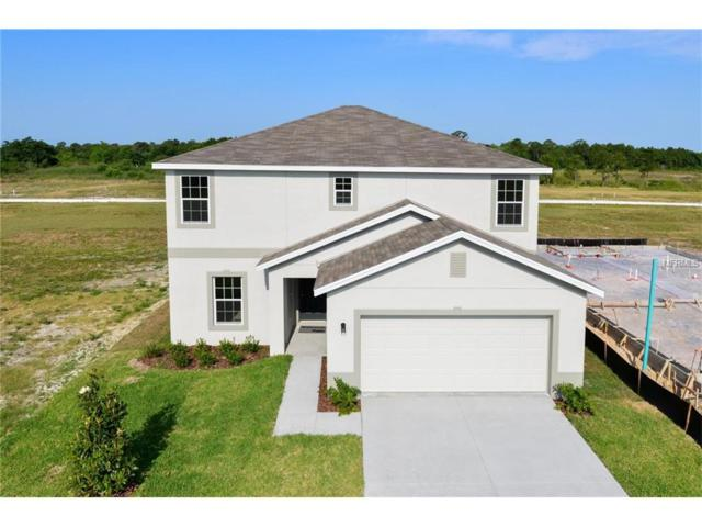 249 Tanager Street, Davenport, FL 33837 (MLS #W7632196) :: Cartwright Realty
