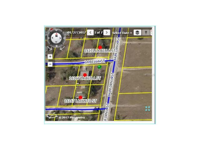 16172 La Bella Street, Brooksville, FL 34604 (MLS #W7632204) :: The Duncan Duo Team