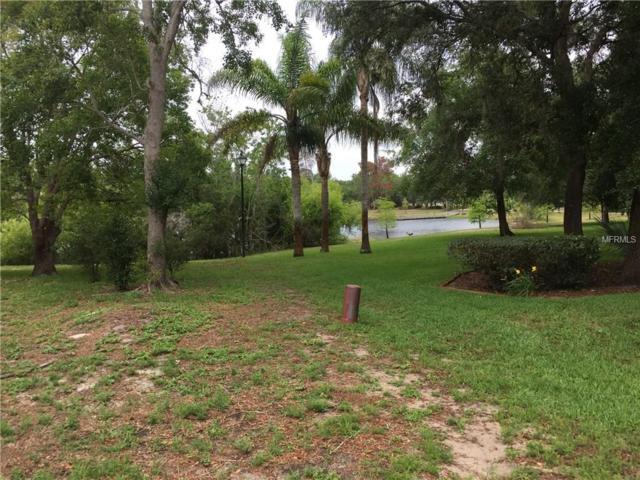 5091 Suwannee Road, Weeki Wachee, FL 34607 (MLS #W7632439) :: Griffin Group