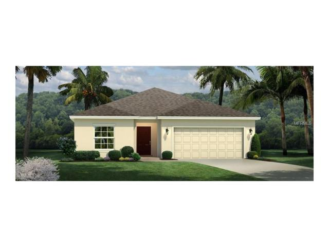 11121 Spring Point Circle, Riverview, FL 33579 (MLS #W7632567) :: The Duncan Duo & Associates