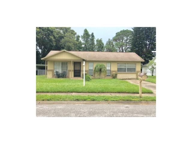 6841 Willits Avenue, New Port Richey, FL 34655 (MLS #W7632990) :: Team Pepka