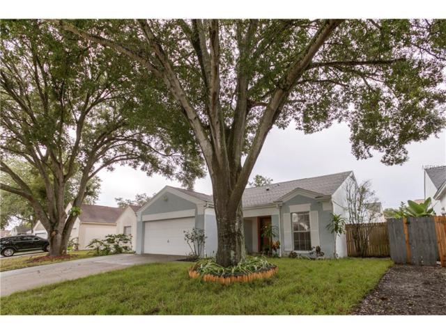 8425 Unity Drive, Port Richey, FL 34668 (MLS #W7632991) :: Arruda Family Real Estate Team