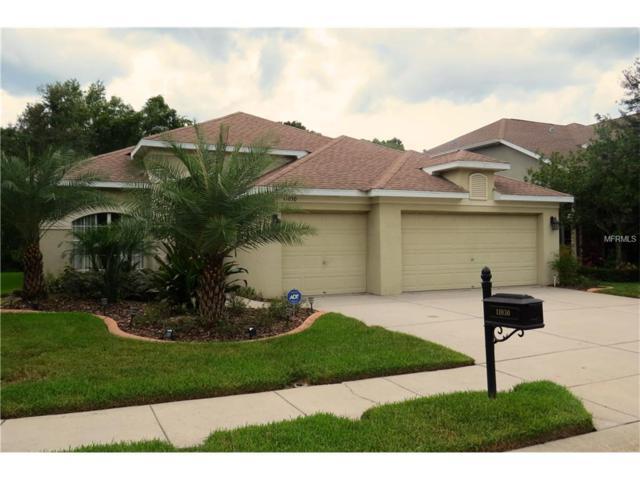 11030 Oyster Bay Circle, New Port Richey, FL 34654 (MLS #W7633016) :: Sosa | Philbeck Real Estate Group