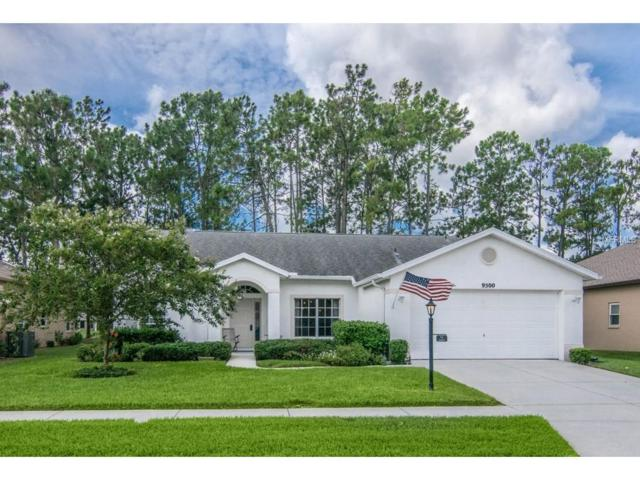 9500 Conservation Drive, New Port Richey, FL 34655 (MLS #W7633052) :: Griffin Group