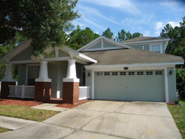 4810 Sky Blue Drive, Lutz, FL 33558 (MLS #W7633095) :: Arruda Family Real Estate Team