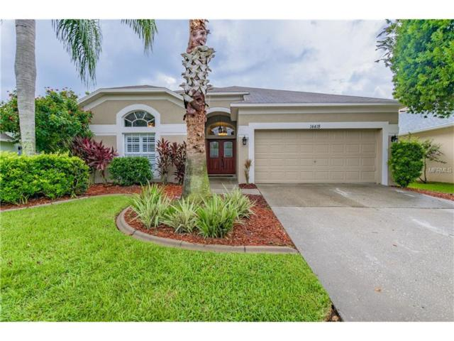 14418 Pepperpine Drive, Tampa, FL 33626 (MLS #W7633098) :: Gate Arty & the Group - Keller Williams Realty