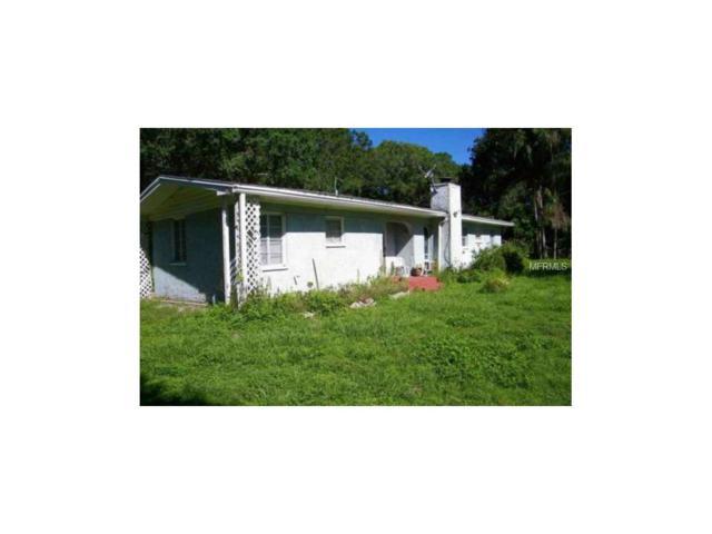 14730 And 14720 Bluestone Lane, Odessa, FL 33556 (MLS #W7633358) :: Team Bohannon Keller Williams, Tampa Properties