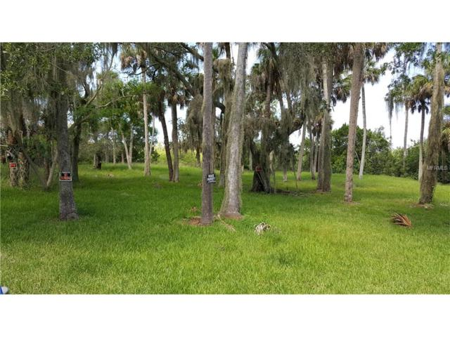 5400 Tropical Woods Court, Port Richey, FL 34668 (MLS #W7633388) :: The Duncan Duo Team