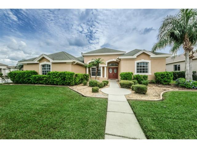 1642 Daylily Drive, Trinity, FL 34655 (MLS #W7633454) :: Delgado Home Team at Keller Williams