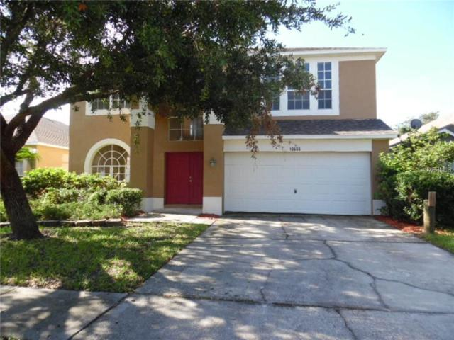 13606 Mere View Drive, Odessa, FL 33556 (MLS #W7633491) :: Team Bohannon Keller Williams, Tampa Properties