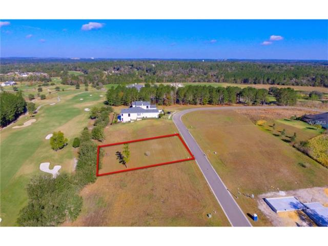 5367 Grand Summit Drive, Brooksville, FL 34601 (MLS #W7633690) :: Mark and Joni Coulter | Better Homes and Gardens
