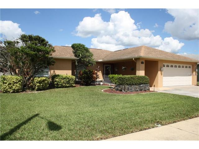 9035 Remington Drive, New Port Richey, FL 34655 (MLS #W7633793) :: Griffin Group